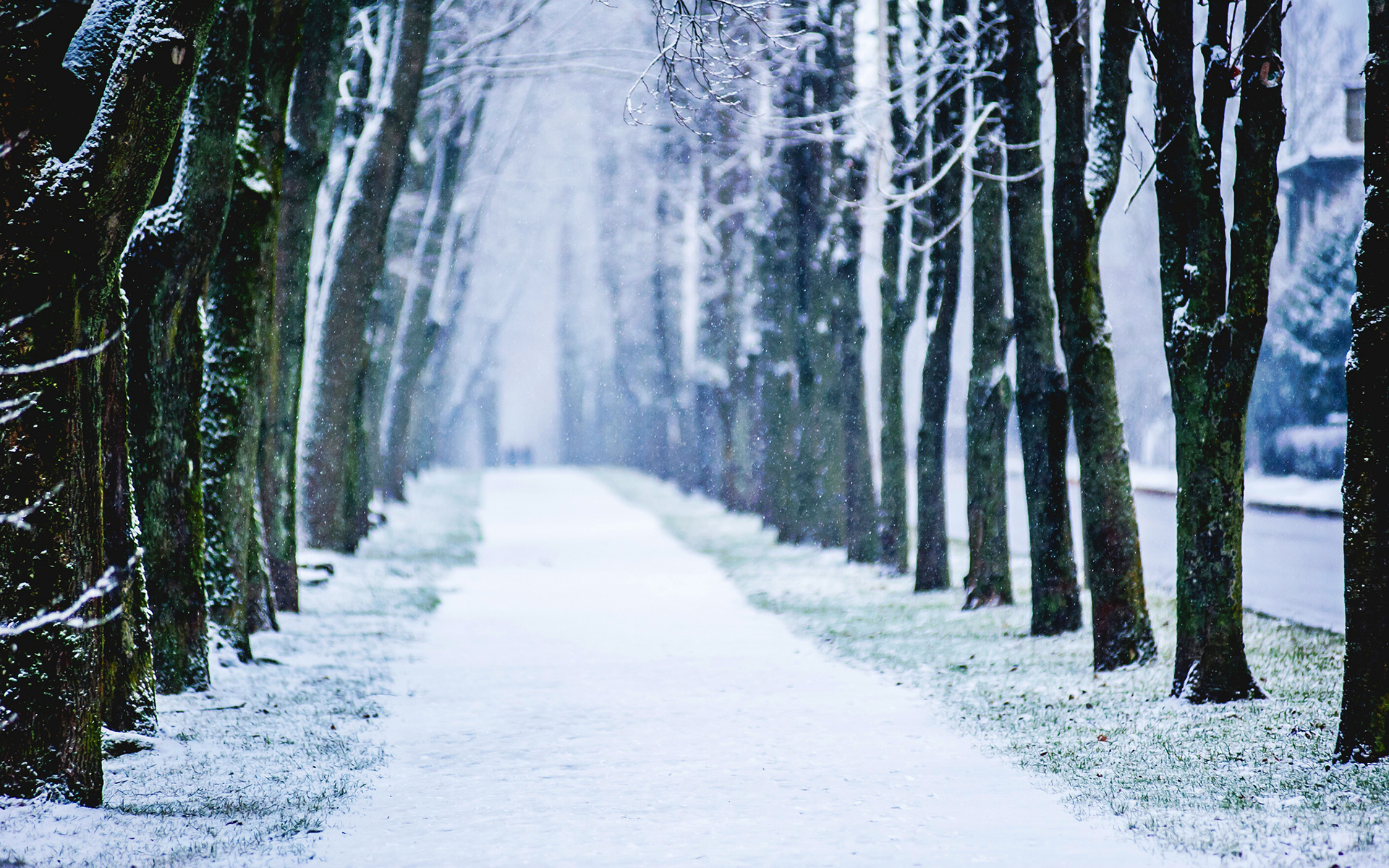 hd winter backgrounds