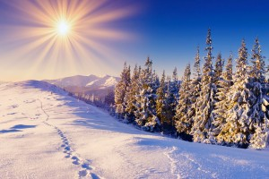 hd winter wallpapers