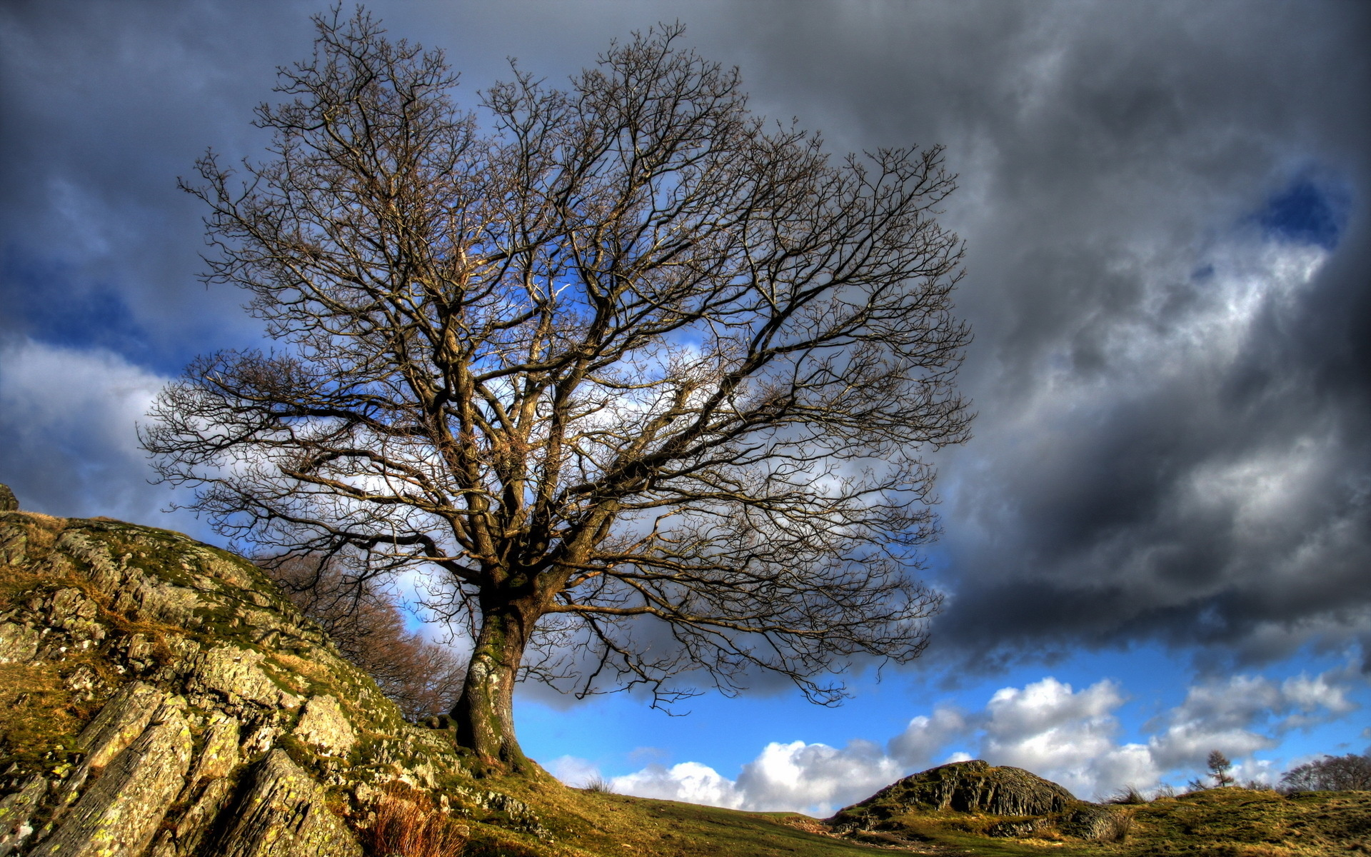 hdr nature wallpaper download