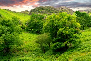 hills wallpaper nature