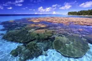 island background wallpaper beach