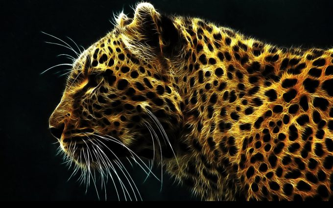 jaguar wallpaper 1080p