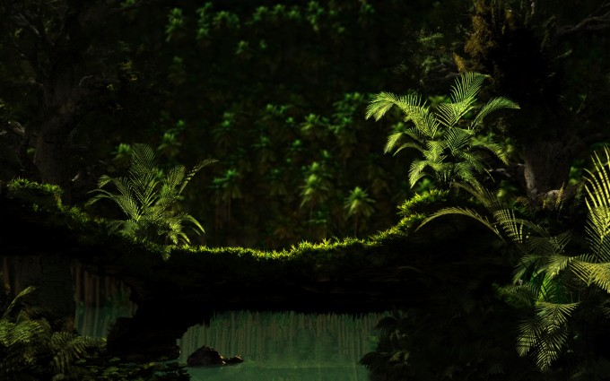 jungle wallpapers nice