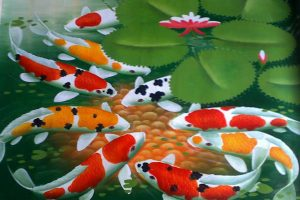 koi fish picture