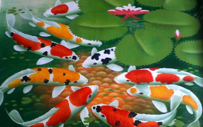 koi fish picture