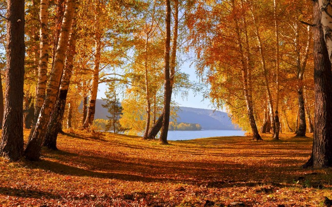 lake backgrounds autumn