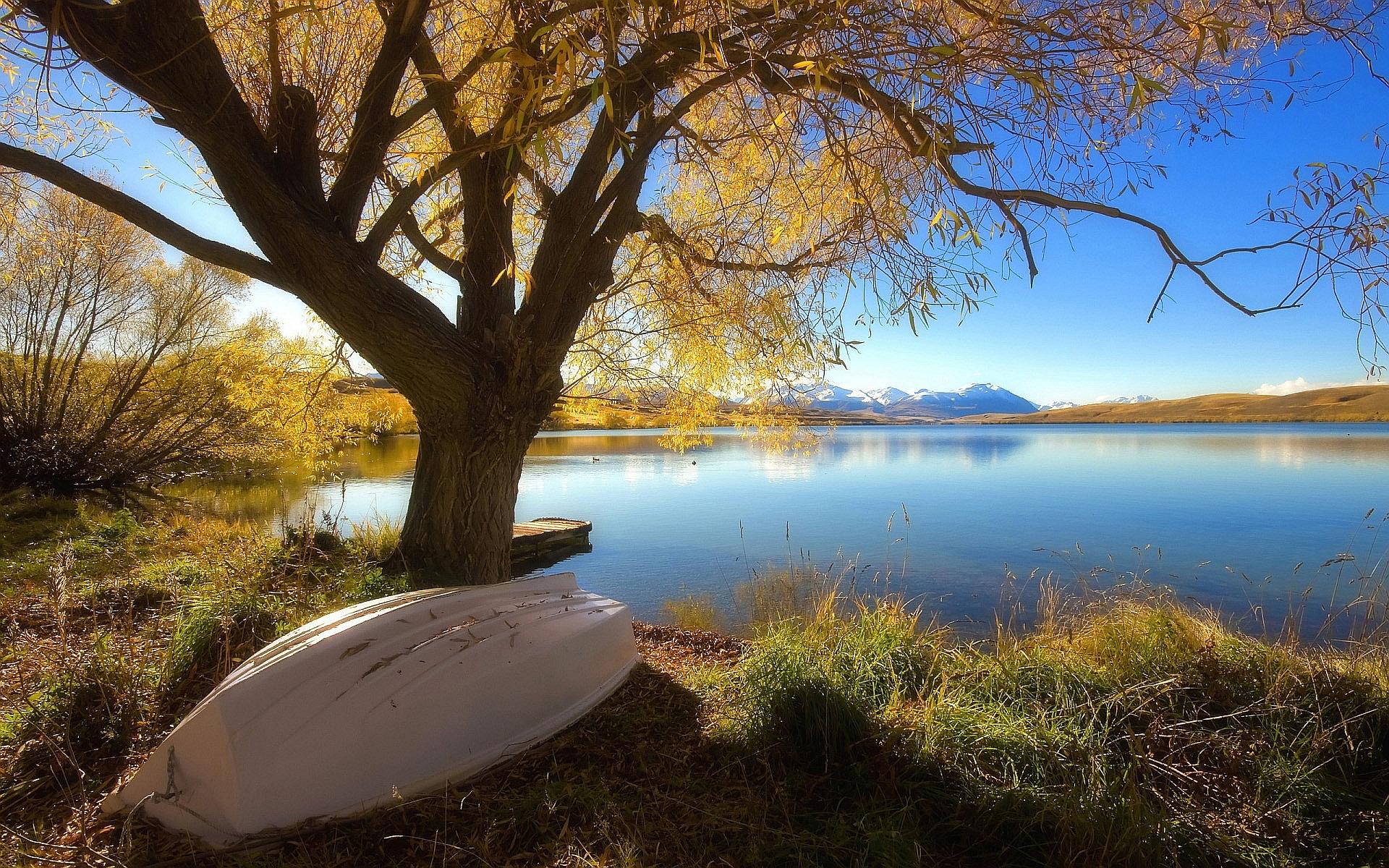 lake backgrounds new zealand
