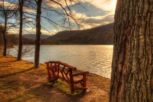 lake backgrounds park bench