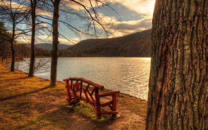 lake backgrounds park bench