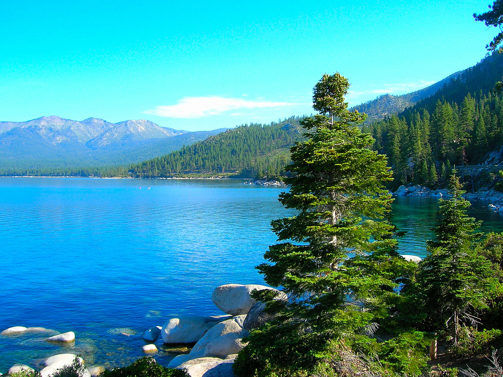lake backgrounds tahoe