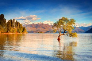 lake backgrounds wanaka