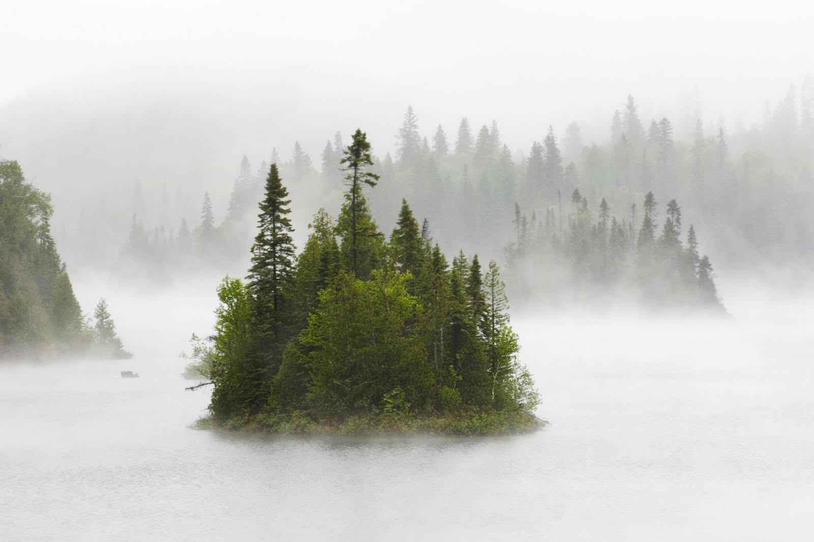 lake wallpaper fog