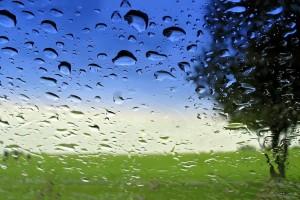 landscape dre drops
