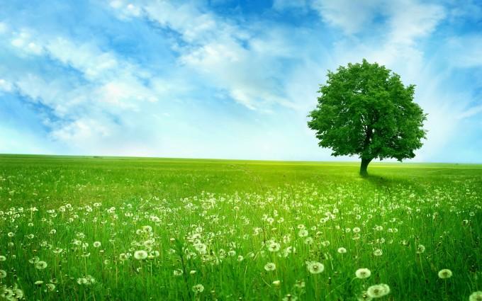 landscape free green