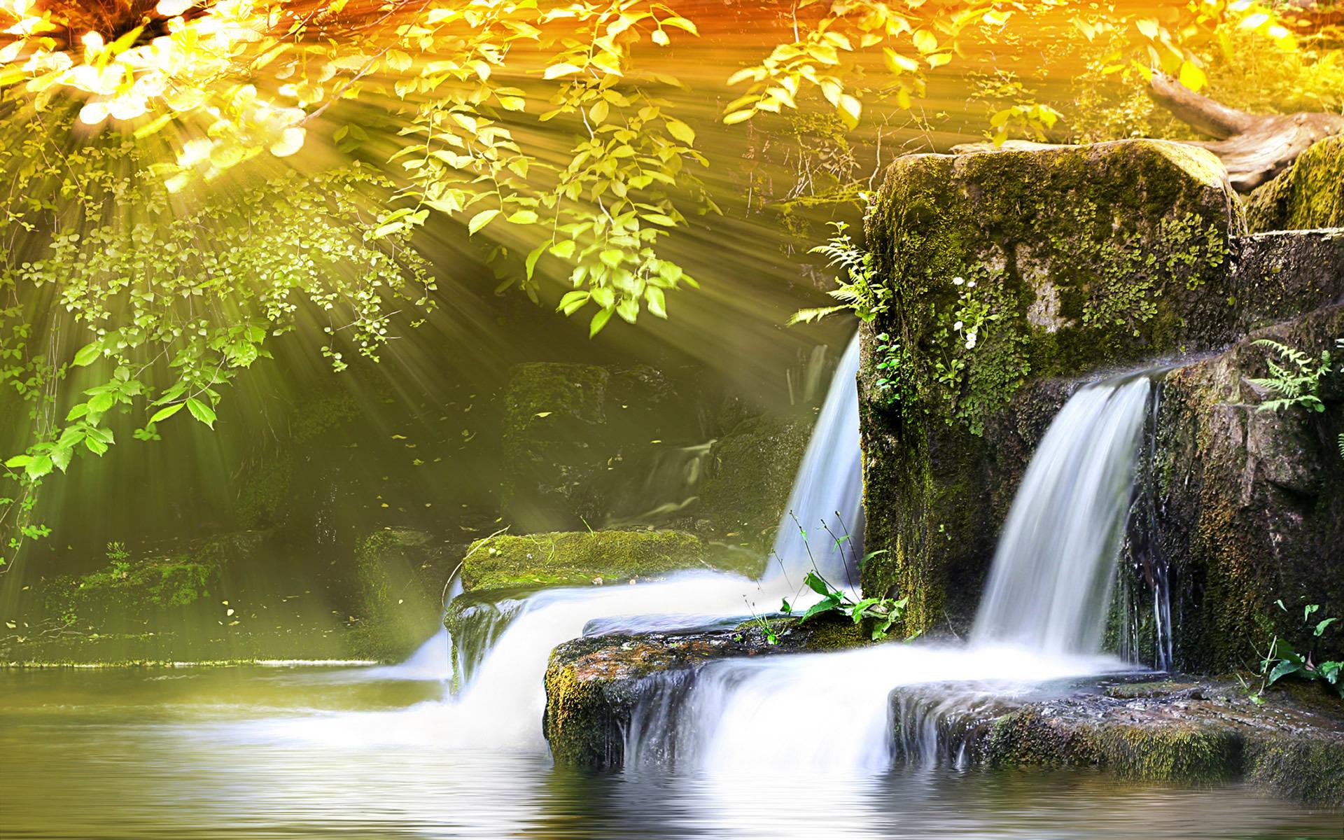 landscape nature