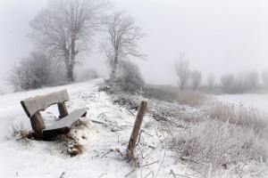 landscape photos winter