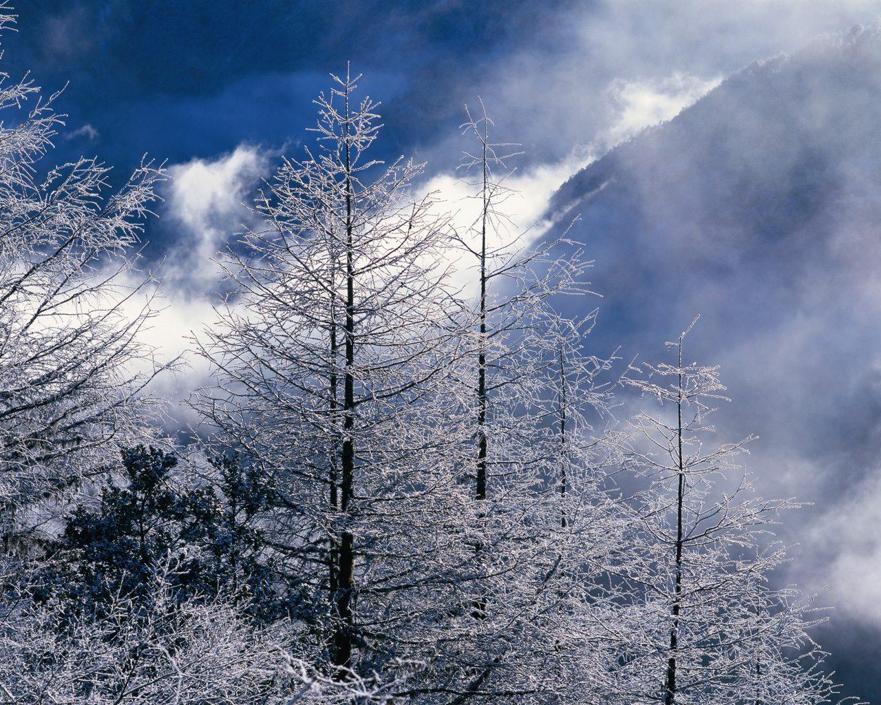 landscape pictures beautiful