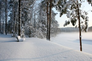 landscape scenery winter