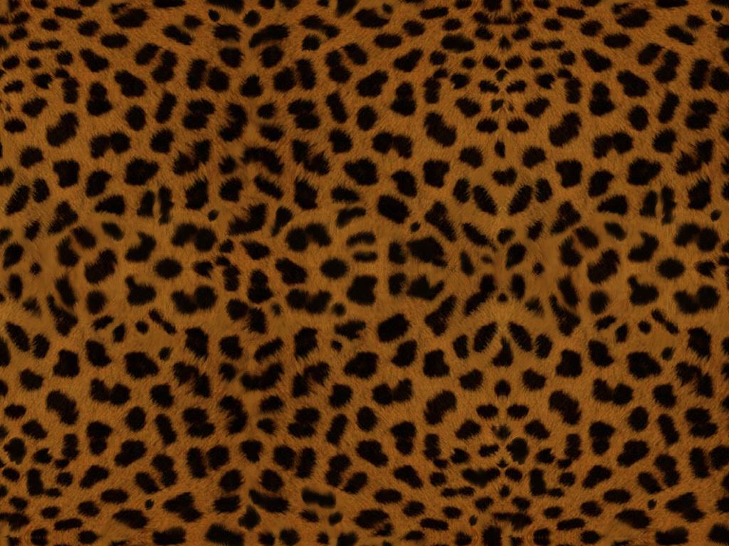leopard print wallpaper border