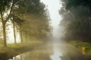 mist wallpaper river