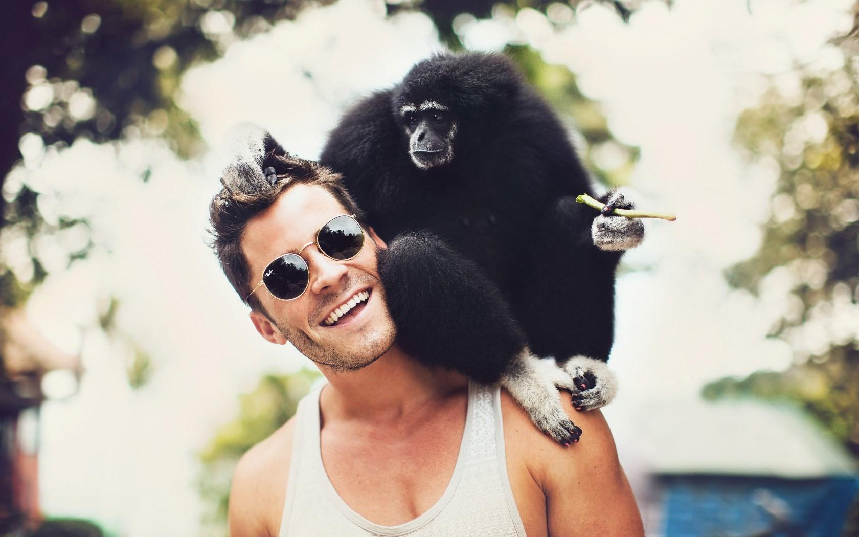 monkey pet