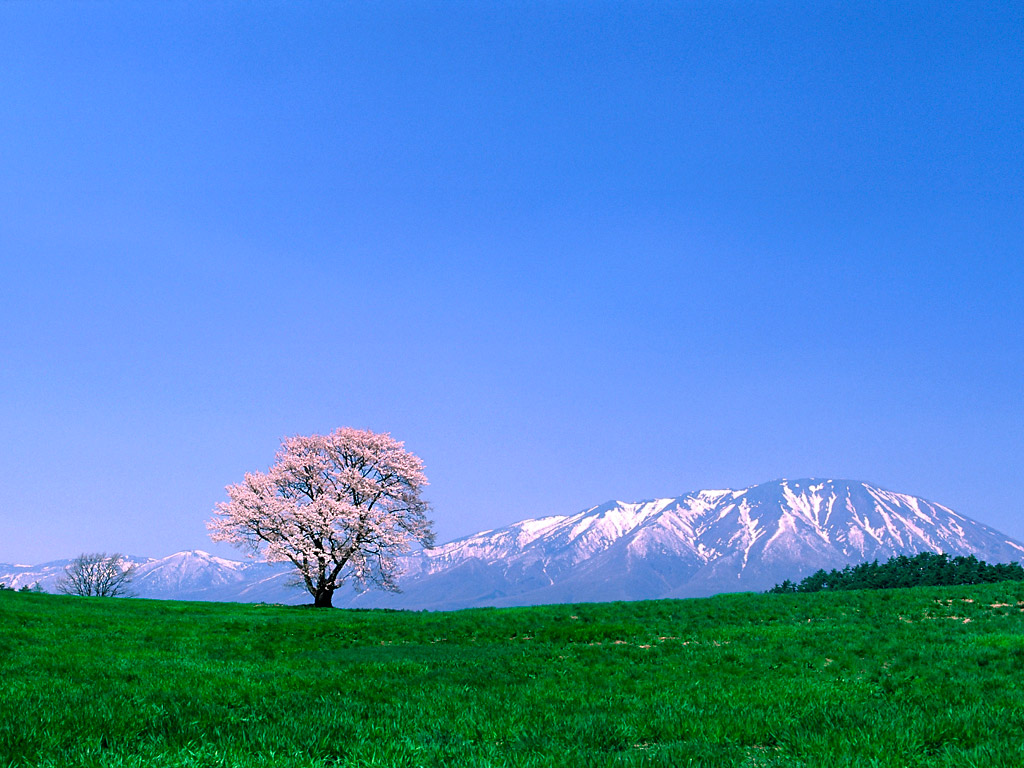 mountain background nature