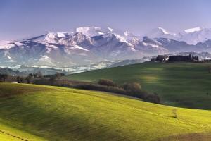 mountain wallpaper meadows
