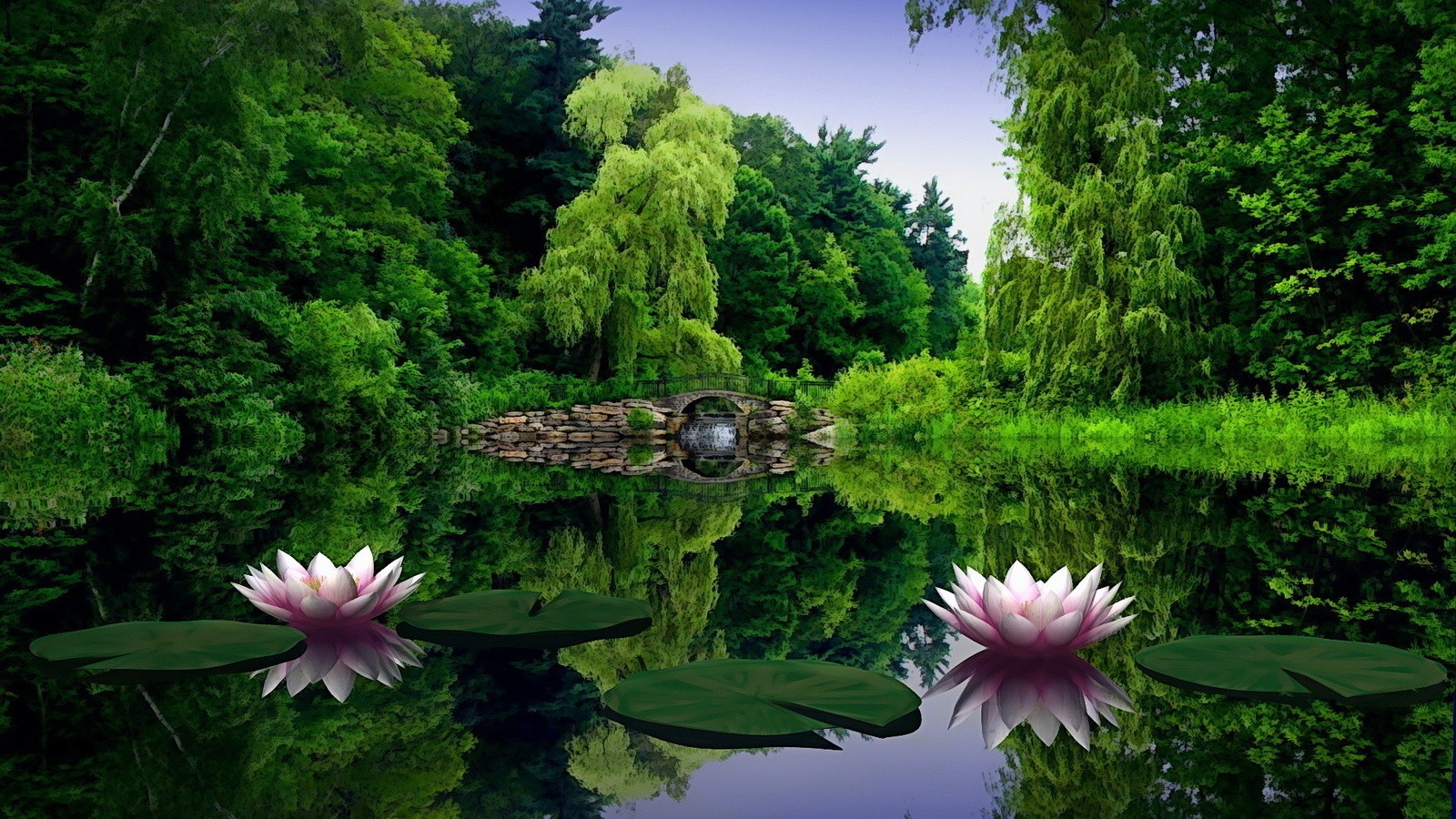 nature background download