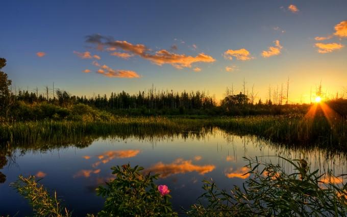 nature backgrounds desktop
