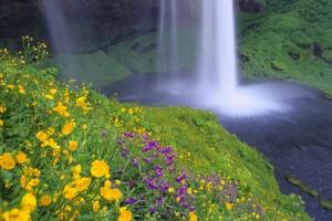 y9162 Iceland, South-Iceland,waterfall Seljalandsfoss. - Island, Suedisland,Wasserfall Seljalandsfoss.01.07.2005.- NUR DIGITAL ONLY, 48 MB. Copyright: Wolfgang Fuchs / Bilderberg