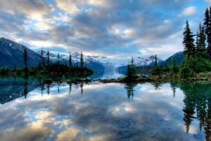 nature reflective wallpaper