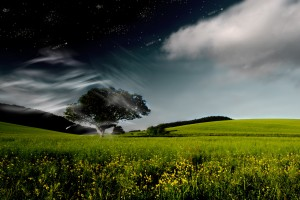 nature wallpapers hd A34