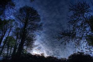 night sky wallpaper nature