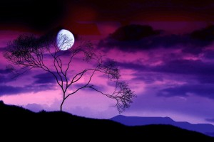 night sky wallpaper purple