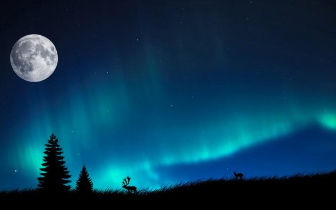 northern light A1