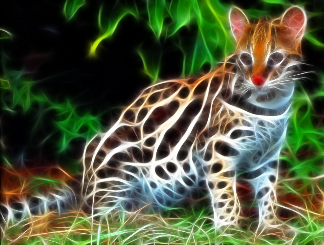 ocelot 3d wallpaper