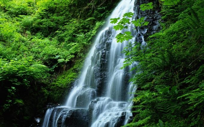 oregon wallpaper waterfall