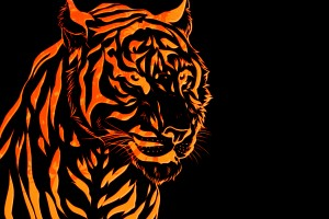 paper tiger wallpaper