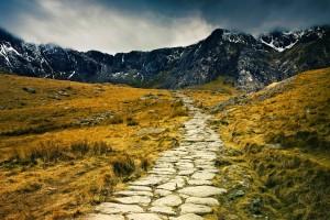 path wallpaper landscape