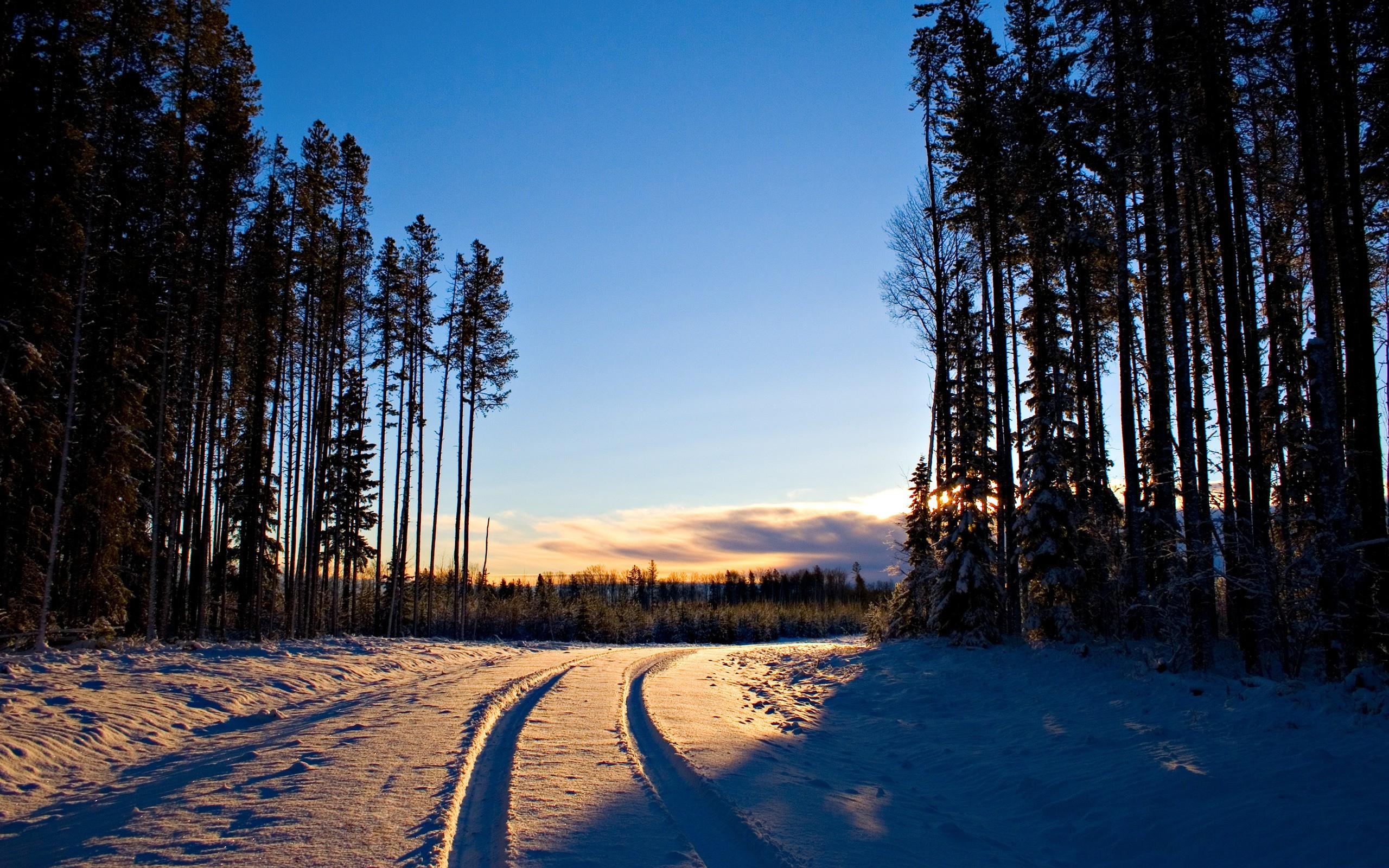 path wallpaper snow
