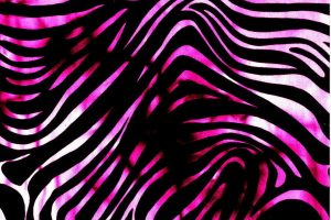pink and black zebra print wallpaper