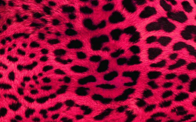 pink leopard print wallpaper