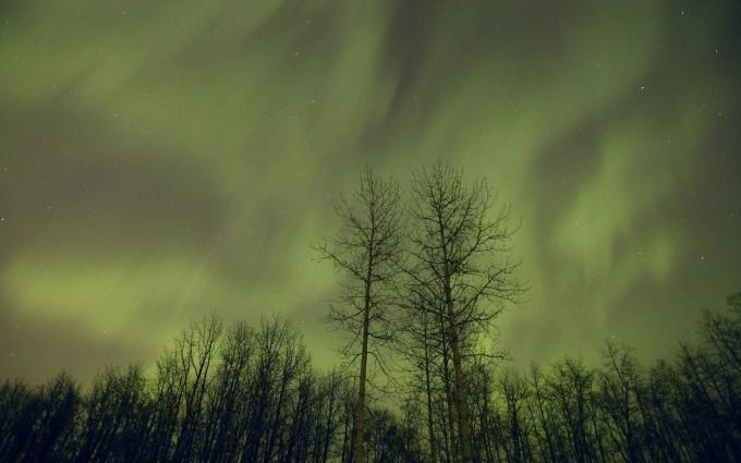 polar lights wallpaper
