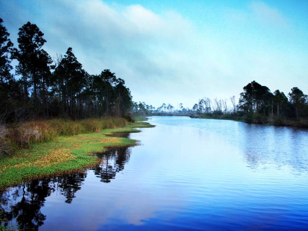 pond photos
