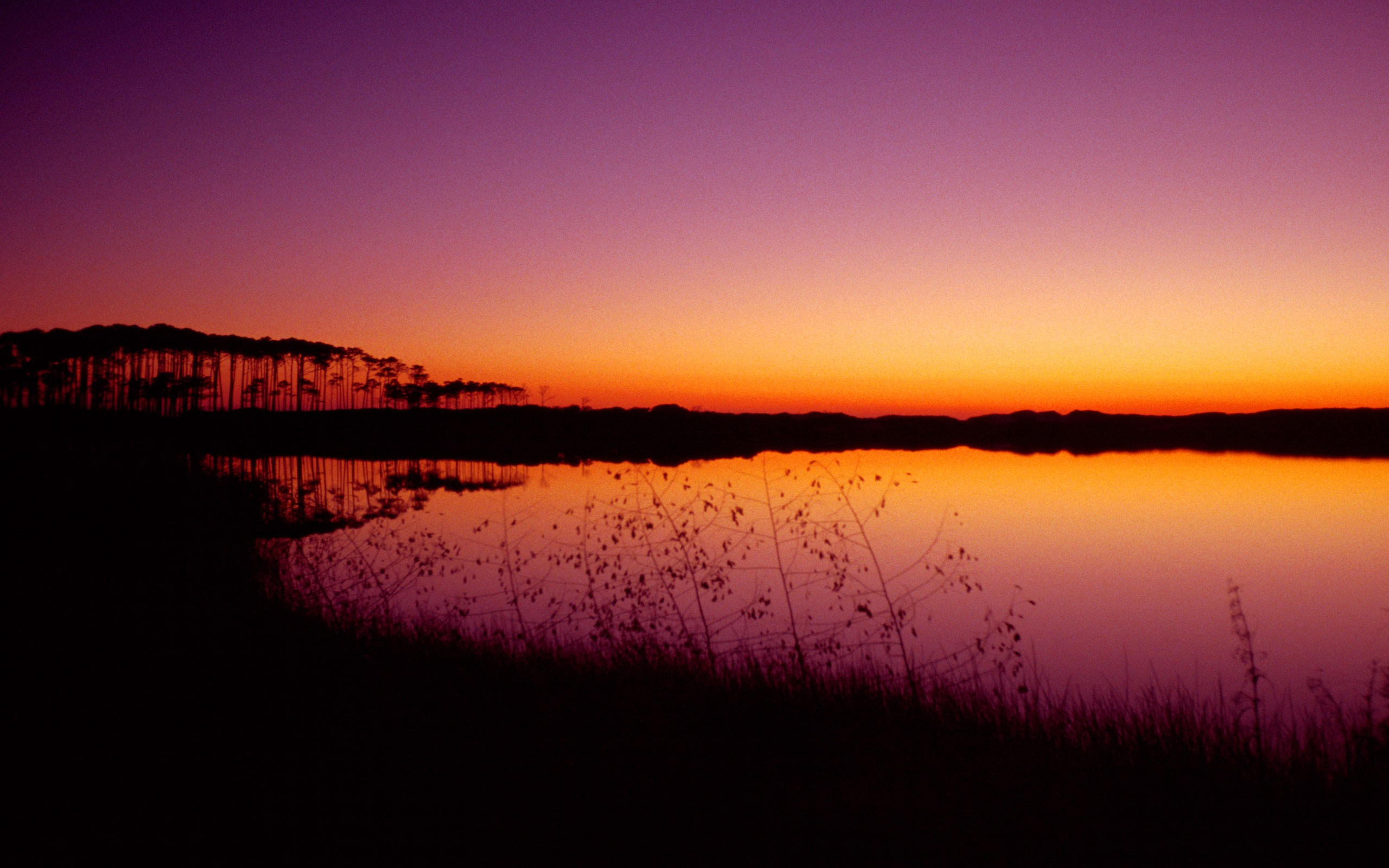 purple sunset wallpaper landscape