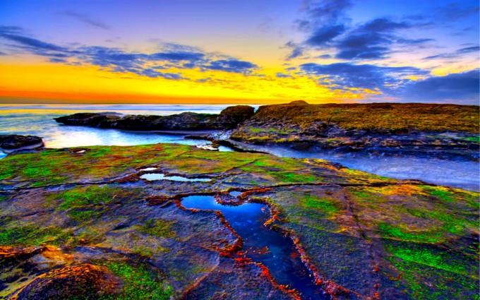 reef wallpaper nature