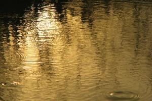 ripples wallpaper A1