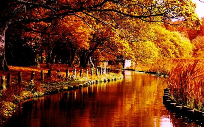 river wallpaper autumn