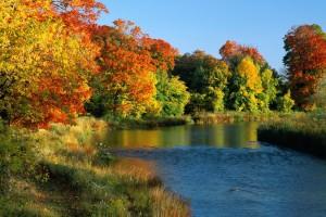 river wallpaper fall
