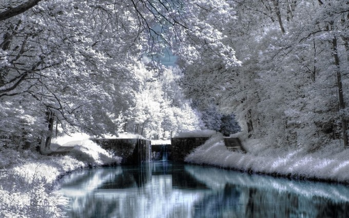 scenery winter pictures